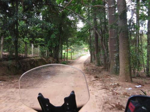 SL Paraitinga 061