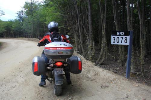 IMG 0135